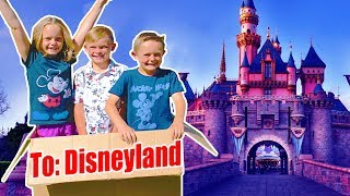 WE MAILED OURSELVES TO DISNEYLAND AND IT WORKED! (skit) Kids Fun TV Family Vacation
