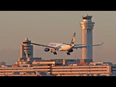 [4K] [運航最終日] Last day... Skymark Airlines Airbus A330 landing at Tokyo Haneda Airport (スカイマーク)