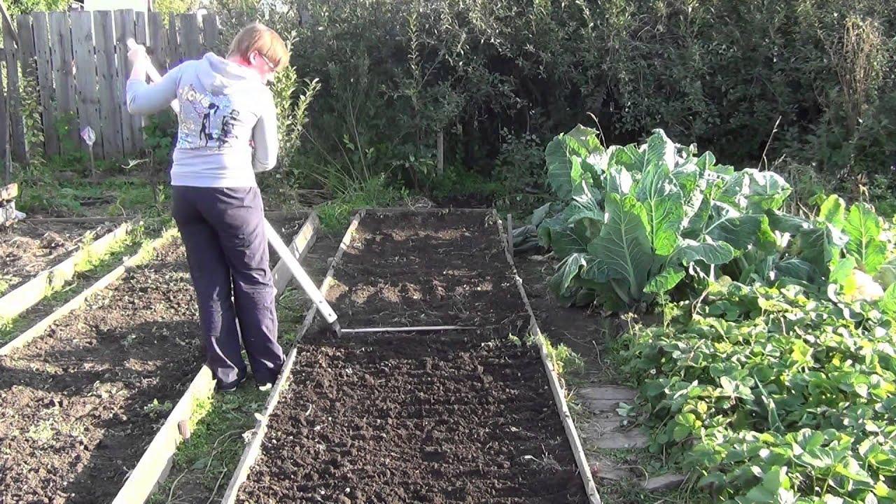 Сидераты как удобрения - когда сеять, какие лучше выбрать 27