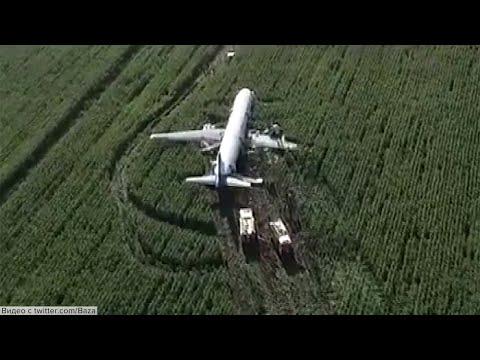 Мастерская посадка в Жуковском: пассажирский самолет приземлился прямо в поле.