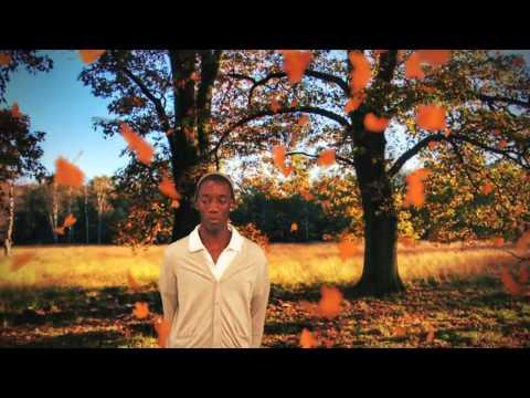 Andreas Vollenweider Airdance (VideoClip)