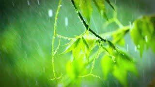 RAINSTORM | Always relaxing, never wet. Helps you sleep. 10 Hours
