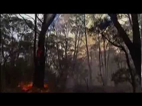 Giant Australian Bushfire Caused By Military Exercise