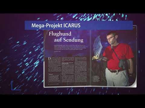 Mega-Projekt ICARUS - Die neue Vermessung der Tierwelt (bild der wissenschaft 08/2018)