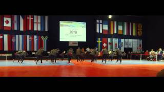 Team GJ - IDO world Championship 2014 - Bochum (2)