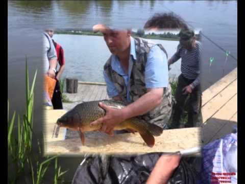 три пескаря платная рыбалка официальный