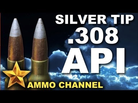 AMMOTEST: Silver Tip .308 Armor Piercing Incendiary