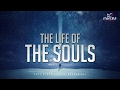 The Life and Journey of the Souls! (Full Video)