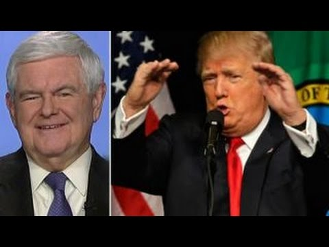 Gingrich: The leader of the Republican Party today is Trump