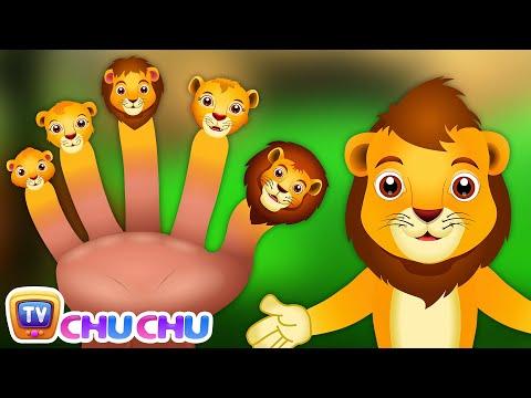 Lion Finger Family   ChuChu TV Animal Finger Family Songs For Children