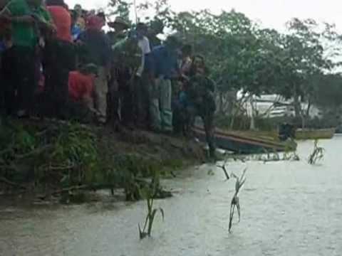 liberaciòn de tortugas arrau y terecay 04/20/2012 en boca de anaro