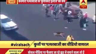 देखिए, कश्मीरी पत्थरबाजों के 'कुत्ताकाट इलाज' का सच | ABP News Hindi
