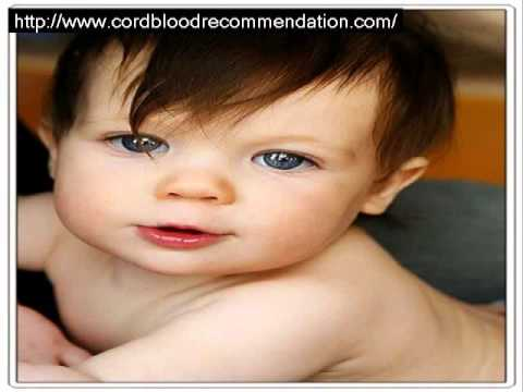 umbilical cord blood | Cord Blood - Life Saving Out of the Womb