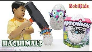 [HOT] Đồ Chơi Trứng Nở Hachimals | Biggest Hatchimals Hatching Ever | Hatchimals Surprise Eggs