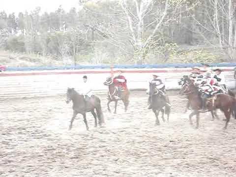 Domadura de caballos el carmen