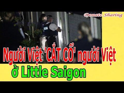Người Việt 'C.Ắ.T C.Ổ' người Việt ở Little Saigon MP3