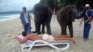 මෙන්න අපූරු මසාජ් කිරිල්ලක්...!! හැබැයි මේ අලි මසාජ්..!! Elephant massage, Phuket Thailand