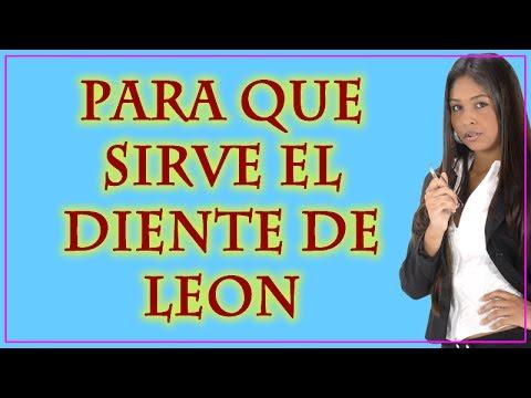Para qué sirve el diente de León - Las Propiedades de Diente de Leon