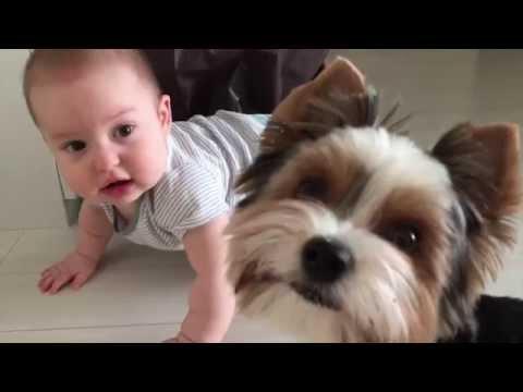 Нарезки видео за 7 месяц Тима.