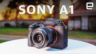 Sony A1 review: The Alpha of mirrorless cameras