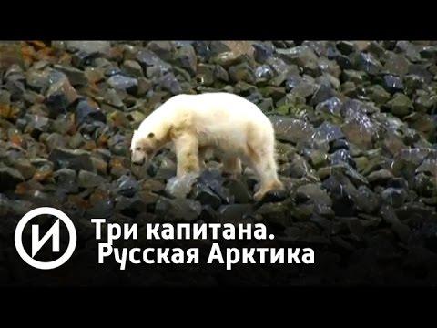 Три капитана. Русская Арктика | Телеканал История