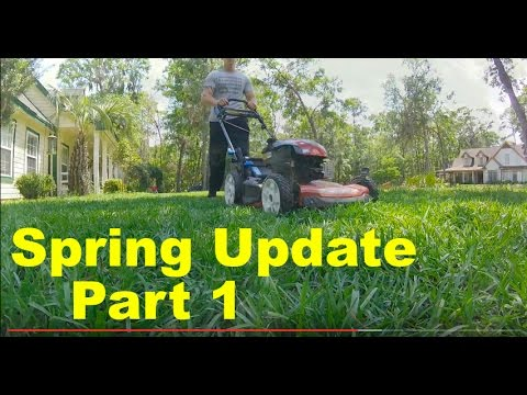 Spring Lawn Care Centipide/St Augustinegrass : 2017 Project Lawn