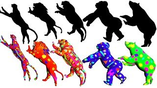wild animals wrong shadow matching game for kids | toddlers,childrens,kids nursery rhymes