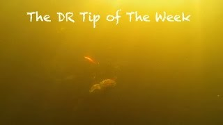 "The DR TIp of the Week ""Off the Beaten Path""mov"