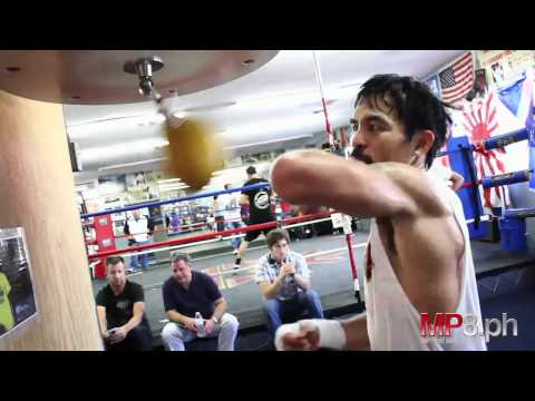 Manny Pacquiao - HARD HITTING SPEED BAG Image 1