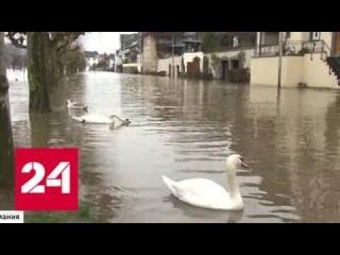 Десятки пострадавших, упавшие краны и деревья: последствия зимнего шторма в Европе - Россия 24
