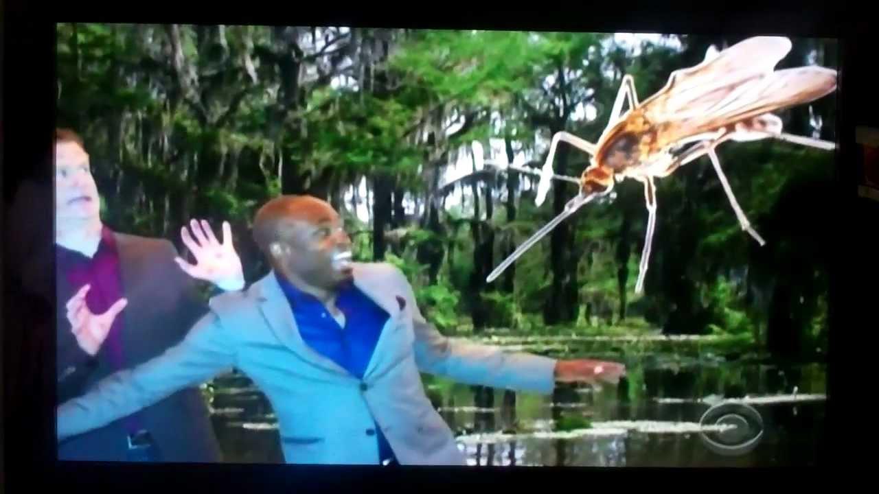 Mosquito Island Movie Zonk Mosquito Island Trip