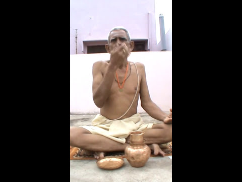 Sandhyavandanam By Parimi Bala Krishna Murthy video