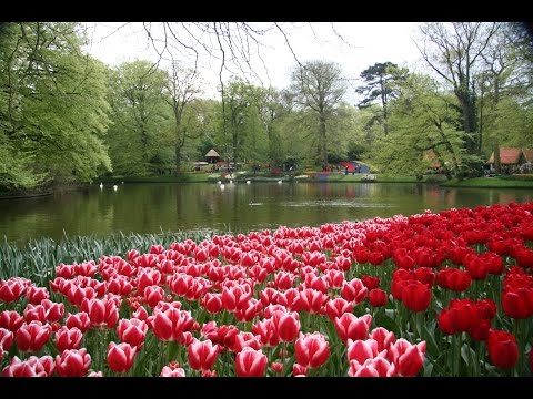 Netherlands: Top 10 Tourist Attractions - Video Travel Guide