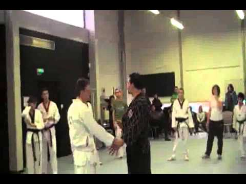 1° Training of Horangi Hoshinkwan Hapkido in France 2010 Image 1
