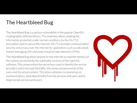Der BUG des Jahres | Openssl Heartbleed | Security