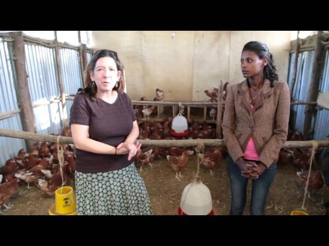 Compassion International: Raising Chickens