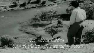 Song: Aaja Re Pardesi  Film: Madhumathi (1958) with Sinhala Subtitles
