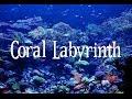 SMW Custom Music - Coral Labyrinth (SPC Echoes 2)