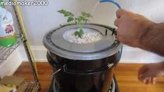 Single dutch bucket hydroponic system easy diy patio balcony