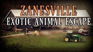 Zanesville Animal Massacre  | True Crime Documentary