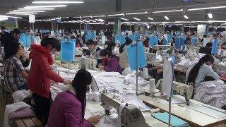 Tin Tức 24h: Về làng làm công nhân may xuất khẩu ở Quảng Bình