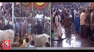 Maha Shivaratri | Devotees Angry Over VIP Darshan Arrangements In Vemulawada Temple | V6 News