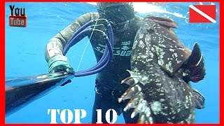 Pesca sub - Top 10 Anno 2014-2015 - Antonino Pellegrino Spearfishing