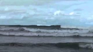 Tamarindo: Surfing Playa Grande, Costa Rica Surfing