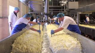 Cheese Making Process
