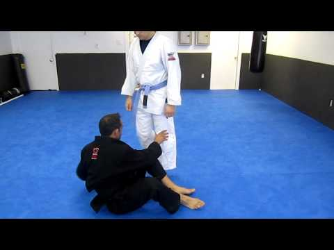 8 partner brazilian jiu-jitsu drills Image 1