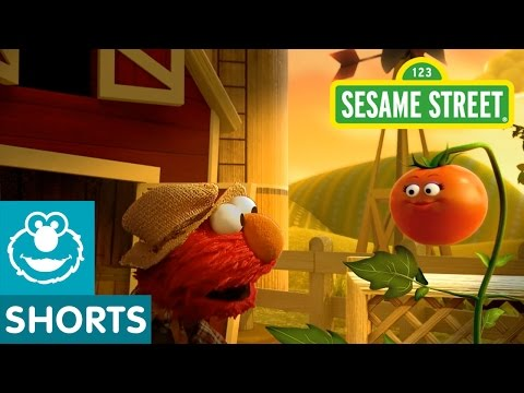 Sesame Street: Elmo The Musical Tomato (preview) video