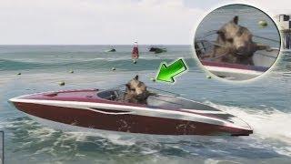 GTA V - UN JABALÍ A BORDO (Grand Theft Auto 5)