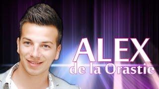 CELE MAI ASCULTATE MELODII - ALEX DE LA ORASTIE (MUZICA BUNA NOU 2014)