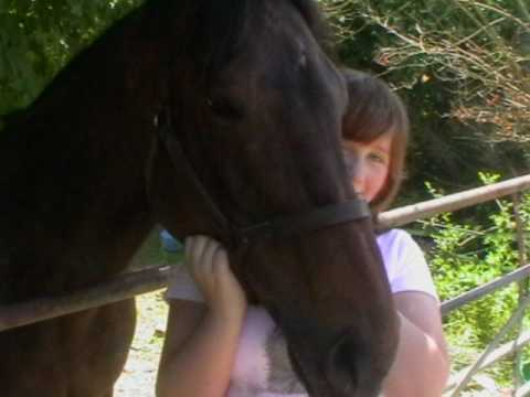 My New Horse X X X video